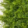 Close Up of Mixed Greenery