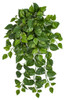 "PR-190020 41"" Pothos Ivy Bush Variegated Cream/Green"
