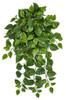 "PR-190020 41"" Pothos Ivy Bush Variegated Cream/Green"