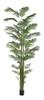P-180290 12' Areca Palm Tree