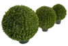 Limited UV Foliage Japanese Boxwood Ball Topiary