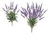 "19"" or 26"" Lavender Bushes - Tutone Purple/Lavender"