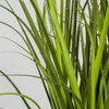 Close Up of PVC Wild Onion Grass