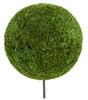 "42"" Japanese Boxwood Ball Topiary"