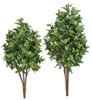 "Plastic Outdoor Boxwood Bushes 33"" or 41"" Sizes"