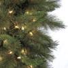 C-81504Mixed Sheridan Pine5.5mm Warm White LED Lights