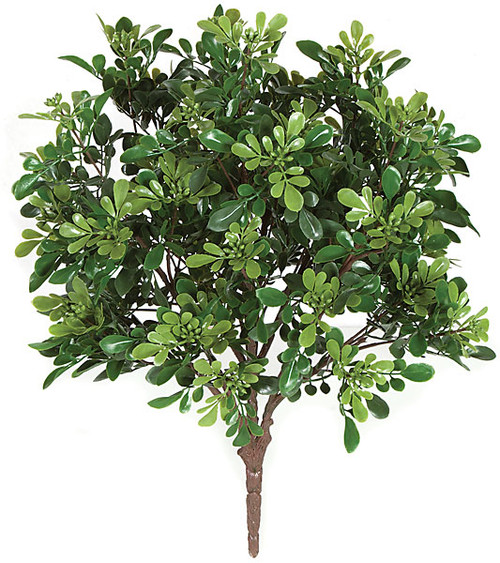 "20"" Outdoor Boxwood Bush 5.5"" Stem Length"