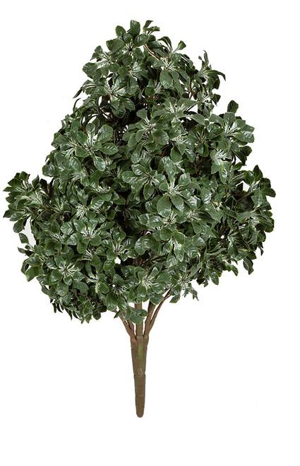 "49"" Outdoor Mahonia Bush - Variegated Cream/Green"