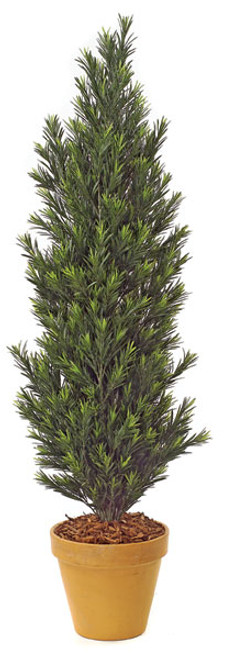 5' Podocarpus BushSynthetic Trunk Decorative Pot Sold Separately