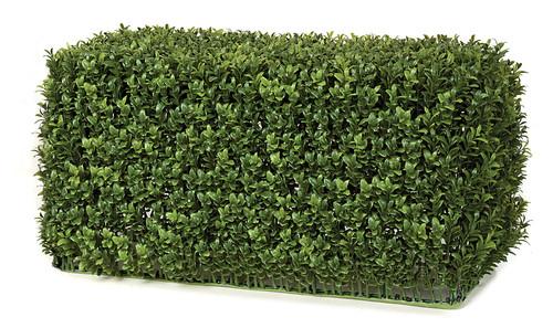 "23"" x 11"" x 12"" English Boxwood Hedge  Tutone Green"