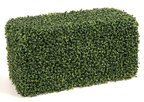 24 x 12 x 12 Inch Boxwood Hedge Traditional Leaf Tutone Green