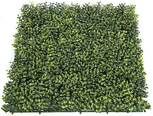 20 Inch Boxwood Mat-3 Inch Height Tutone Green
