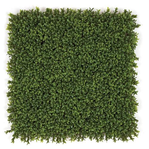 "20 Inch Boxwood Mat 3"" Height Tutone Green"