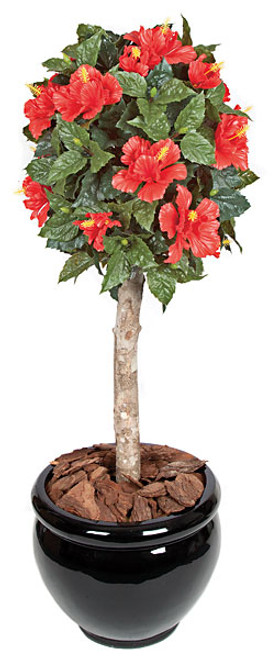 3.5' Hibiscus Ball Topiary