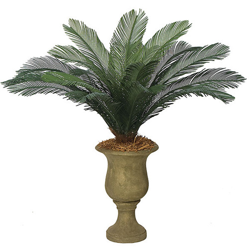 """44"""" Cycas Palm Cluster 18 Large Fronds 68"""" Width"""