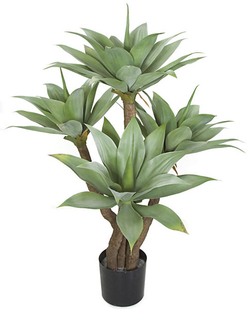"""48"""" Potted Agave Tree with Limited UV Protection"""