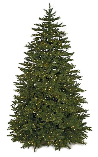 Windswept Pine Treewith LED Lights