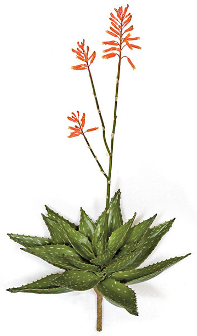 "36"" Plastic Flowering Aloe Plant"