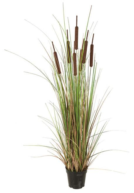 "48"" Cattail Grass with PVC Onion Grass"