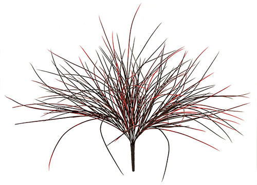 A-2600 - Red/Black