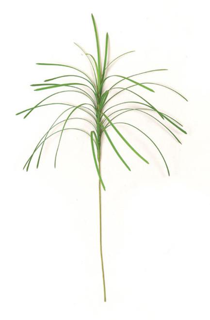 "30"" Plastic Monkey Grass"
