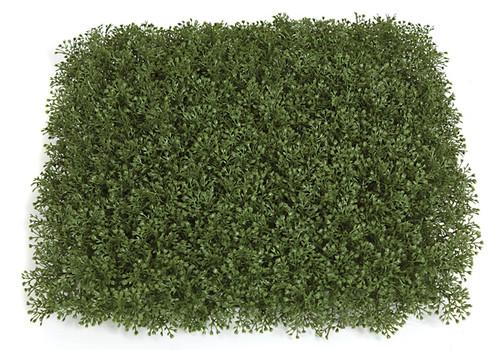 """AR-122330 -  Honey Moss Mat - 12"""" Foliage Width"""