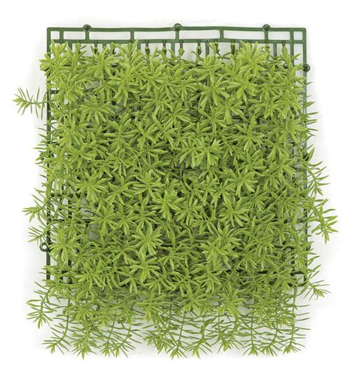 "A-150300 - Hanging Senecio Mat12"" Foliage Length11"" Foliage Width10"" Plastic Grid"