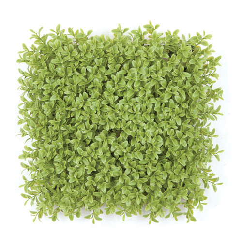 A-150280 - Regular Foliage