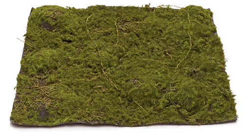"A-5450 13.5"" Moss Mat - Green/Brown"