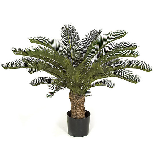 "AUV-102060 30"" Plastic Cycas Palm in Weighted Base"