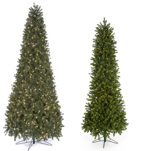 7.5' and 9' Allegheny Fir Trees