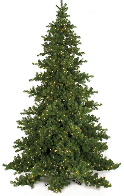 C-9754