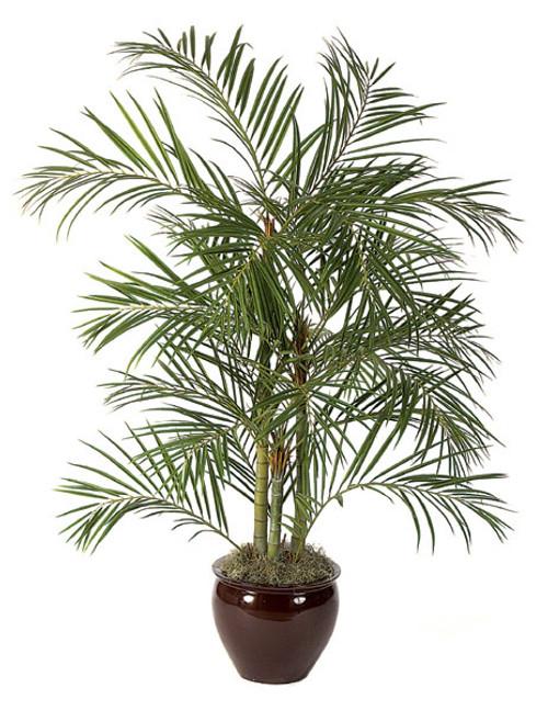 6' Artificial Areca Palm Tree - Regular or IFR Foliage