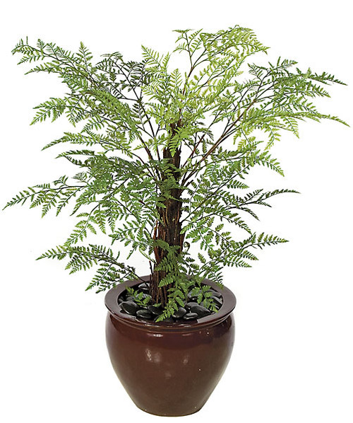 """A-614854 Foot Plastic Royal Fern29"""" WidthDecorative Planter Sold Separately"""
