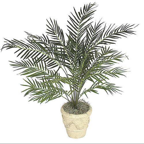 P-371  3.5' Areca Palm Tree - Decorative Pot Sold Separately
