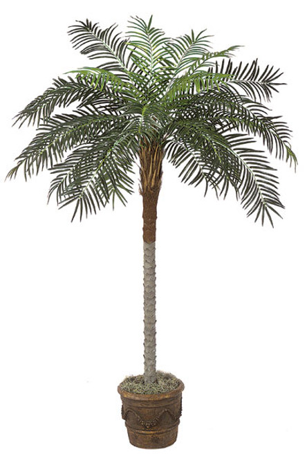 P-2512 7' Phoenix Palm Tree - Decorative Planter Sold Separately