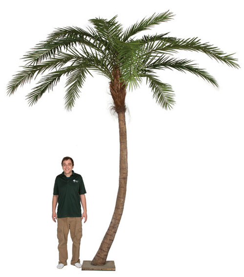 P-127120 - 14 Feet Overall Height Artificial Phoenix Palm Tree with Metal Base