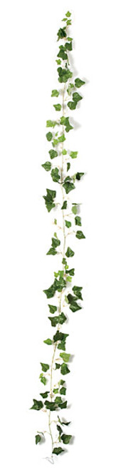 P-81970