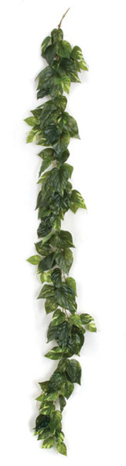 A-1405256' Soft Touch Pothos Garland