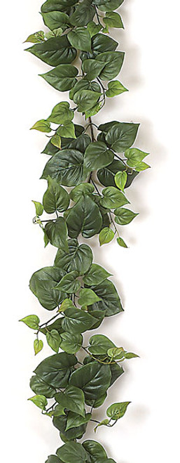 P-73539' Philodendron Garland