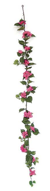 P-7560 Fuchsia/Beauty