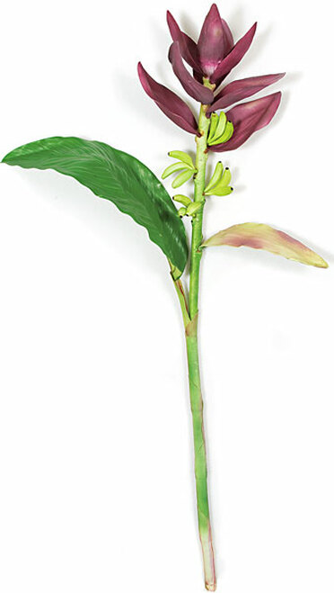 PF-106