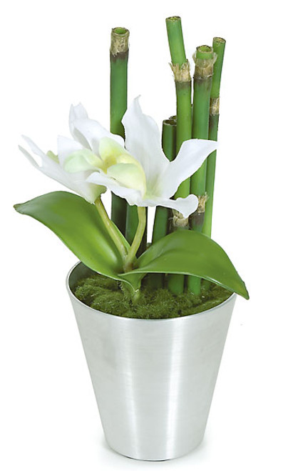 PF-70420