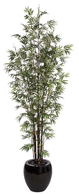 P-8722010' Bamboo PalmDecorative Planter Sold Separately