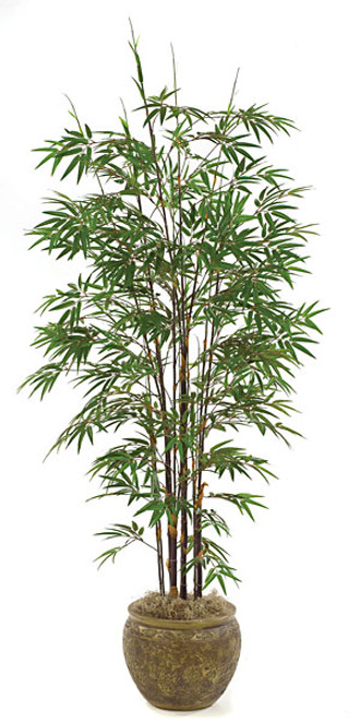 P-37627' Bamboo Palm Decorative Planter Sold Separately