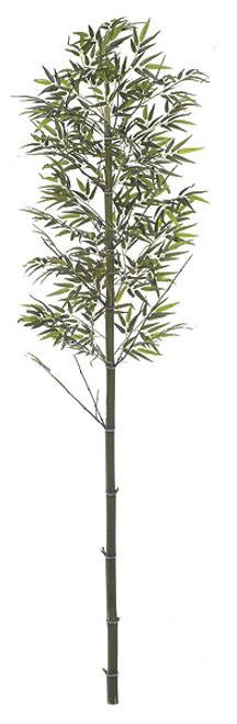 W-66809