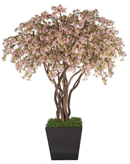 W-1500708' Pink Cherry Blossom TreeDecorative Pot Separately