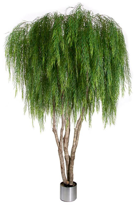 W-138715' Weeping Willow TreeMulti-Wood TrunkWeighted Base