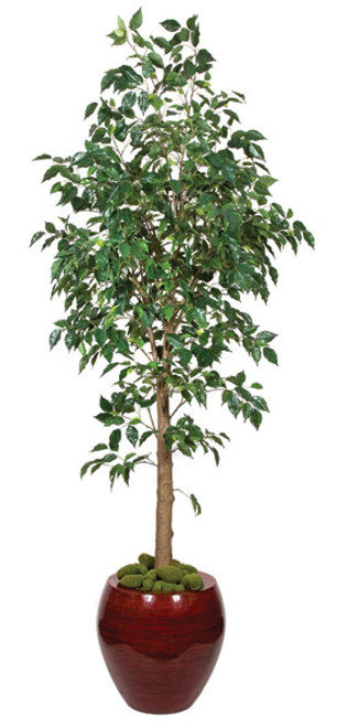 P-70592