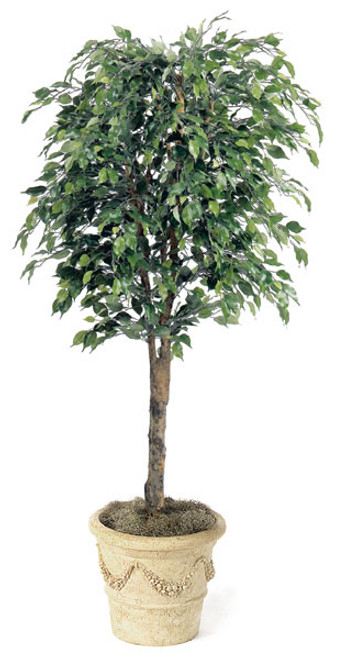 W-764